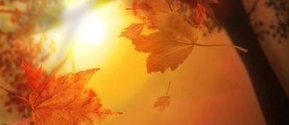 meditazione-autunno.jpg